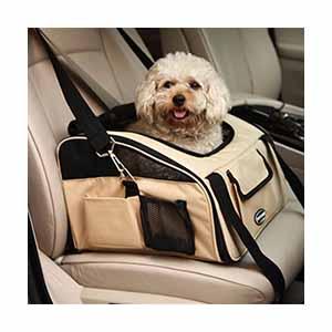Kutya utaztatása